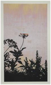 The House of Ord. 4 colour Silkscreen on primed Plywood 77cmx122cm. 2016